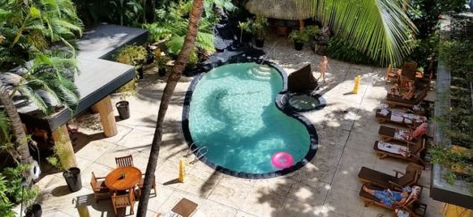bamboo pool from above